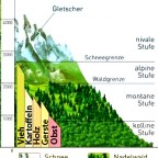 Alpenraum - Wirtschaftsregionen