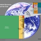 Biomasse auf der Erde