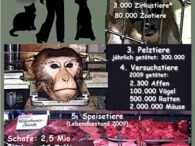 Tierwelten in Deutschland
